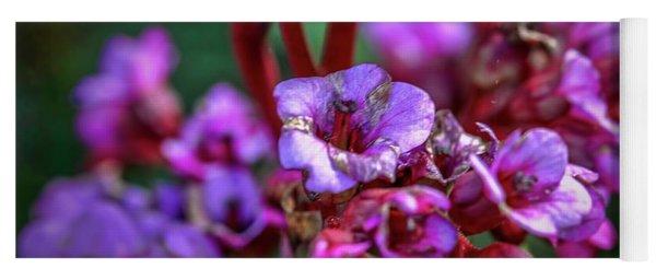 Lilac #h9 Yoga Mat