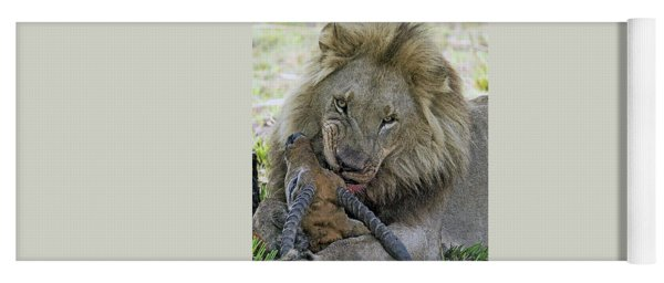 Lion Prey Yoga Mat