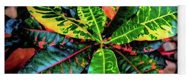Liquid Tropical Colors Yoga Mat