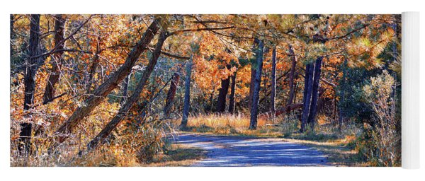 Yoga Mat featuring the photograph Long And Winding Road At Gordon's Pond by Bill Swartwout Fine Art Photography