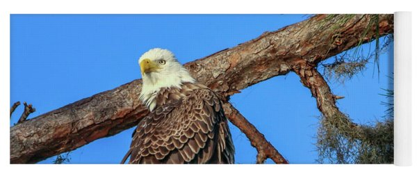 Yoga Mat featuring the photograph Lookout Eagle by Tom Claud