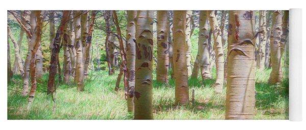 Lost In The Woods - Kenosha Pass, Colorado Yoga Mat