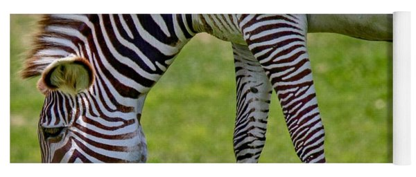 Love Zebras Yoga Mat