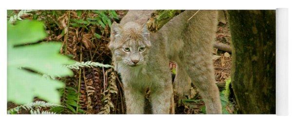 Lynx Yoga Mat