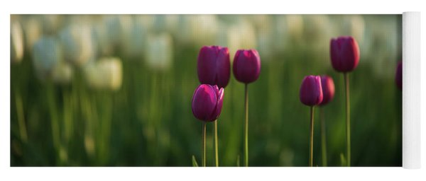Magenta Tulips In Soft Light Yoga Mat