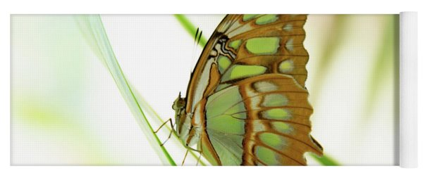 Malachites Butterfly Yoga Mat