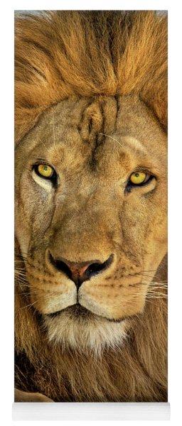 Male African Lion Portrait Wildlife Rescue Yoga Mat