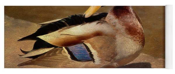 Yoga Mat featuring the painting Male Mallard - Painted by Ericamaxine Price