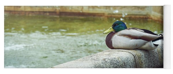 Mallard Resting On The Fountain Of The Fallen Angel In The Retiro Park - Madrid, Spain Yoga Mat