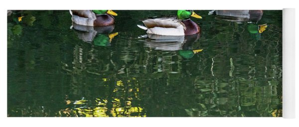 Mallards In The Shadows Yoga Mat