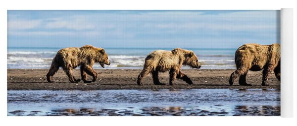 Mama Bear And Her Two Cubs On The Beach. Yoga Mat