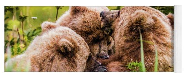 Mama Bear Nursing Her Two Cubs, Lake Clark National Park, Alaska Yoga Mat