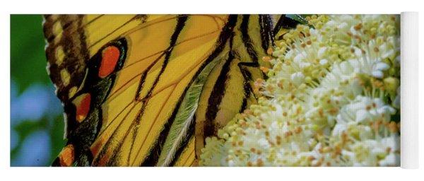 Yoga Mat featuring the photograph Manassas Butterfly by Lora J Wilson