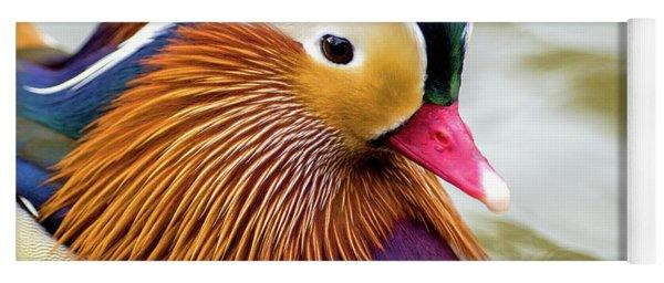 Mandarin Duck Portrait Yoga Mat