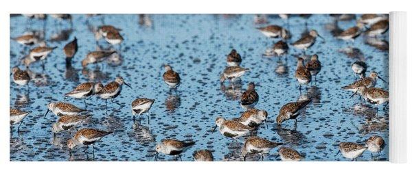 Mixed Flock Of Shorebirds Yoga Mat