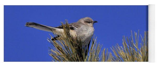 Mockingbird In White Pine Yoga Mat