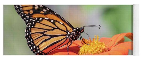 Monarch 2018-25 Yoga Mat