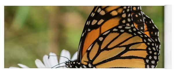 Monarch And Daisies Yoga Mat