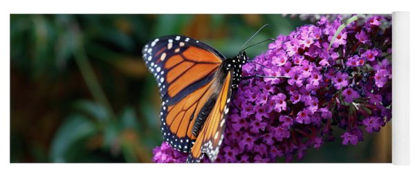 Yoga Mat featuring the photograph Monarch On Pink by Eyes4Nature