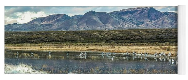 Morning Ascension Bosque Del Apache Nwr Yoga Mat