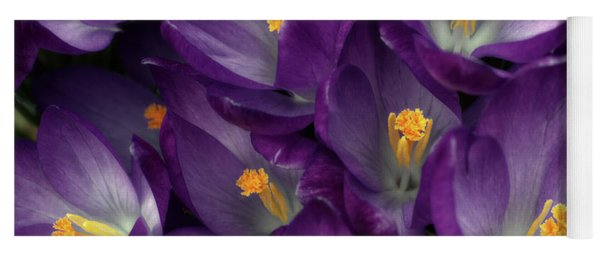 Morning Crocus Yoga Mat