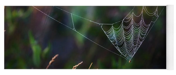 Yoga Mat featuring the photograph Morning Spider by Bill Wakeley
