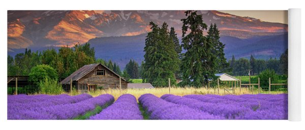 Mount Hood Lavender Field  Yoga Mat