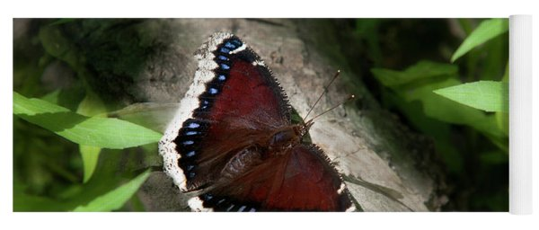 Mourning Cloak Butterfly Yoga Mat