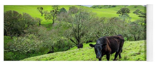 Mt. Diablo Spring Hillside Cattle Yoga Mat