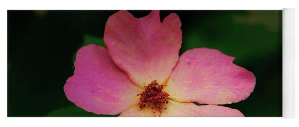 Multi Floral Rose Flower Yoga Mat