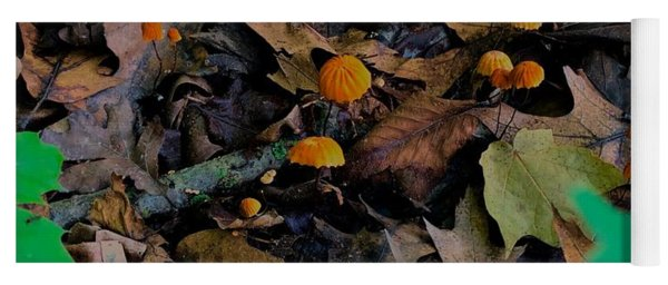 Yoga Mat featuring the photograph Mushrooms And Leaf Litter by Lukas Miller