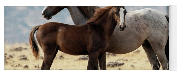 Mustang Colt And Mare Yoga Mat