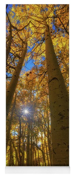 Yoga Mat featuring the photograph Natures Gold by Tassanee Angiolillo
