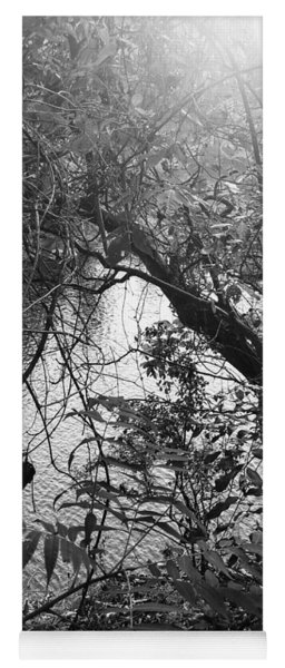 Yoga Mat featuring the photograph Naturescape Black And White by Rachel Hannah