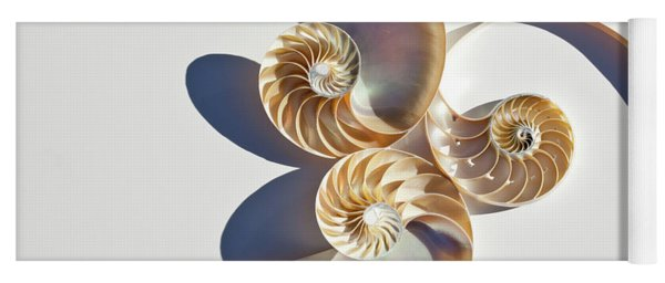 Nautilus 0425 Yoga Mat
