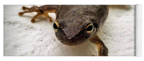 Ninja Frog Yoga Mat