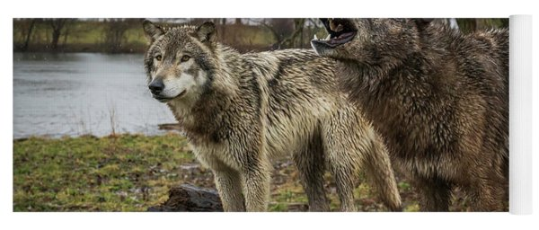 Noisy Wolf Yoga Mat