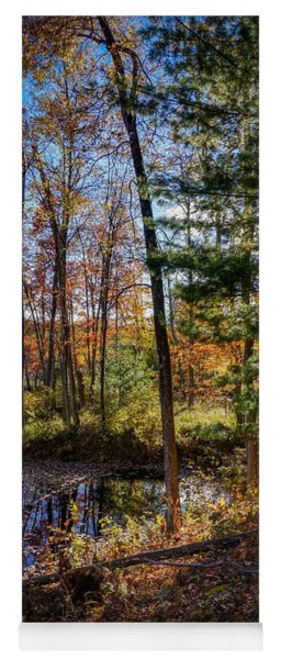 Yoga Mat featuring the photograph October Late Afternoon by Kendall McKernon