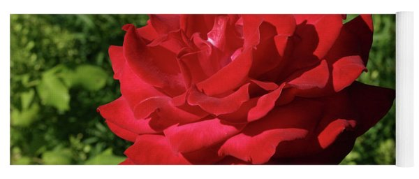 Oh The Blood Red Rose Yoga Mat