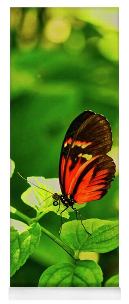Orange Butterfly On Leaf Yoga Mat