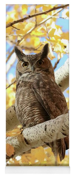 Owl On Autumn Branch Yoga Mat