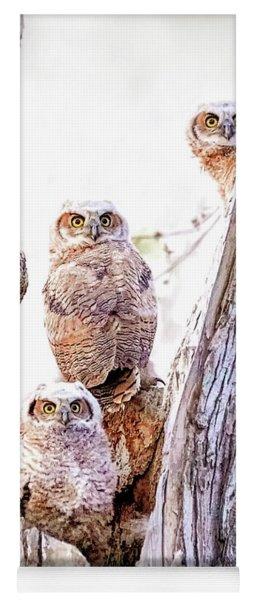 Owl Trio Standing Guard Yoga Mat
