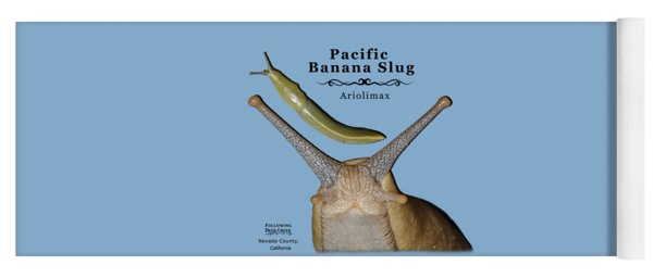 Pacific Banana Slug Yoga Mat