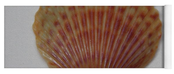 Painted Scallop Shell No 21 Yoga Mat