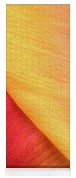 Pastel Curve  Yoga Mat