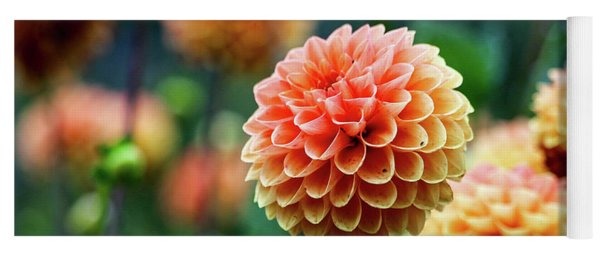 Peach Dahlias Yoga Mat