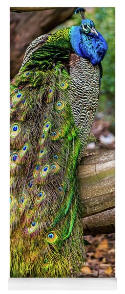 Peacock Watching Yoga Mat