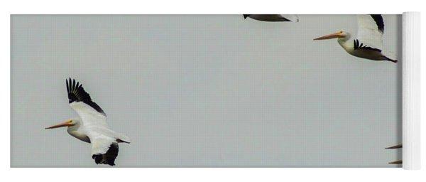 Pelicans In Flight Yoga Mat