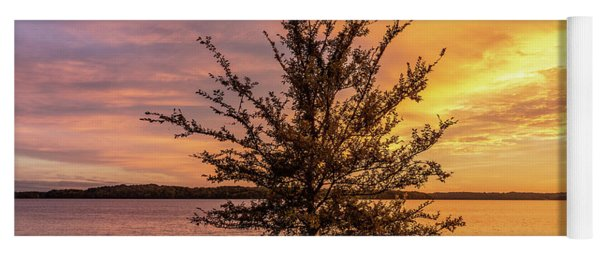 Percy Priest Lake Sunset Young Tree Yoga Mat