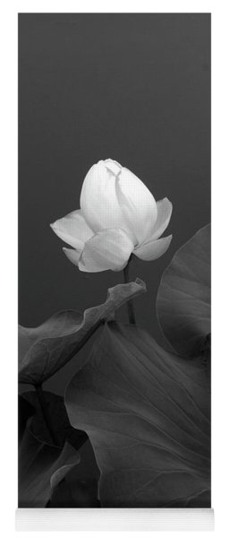 Yoga Mat featuring the photograph Phantom Floral by Jessica Jenney
